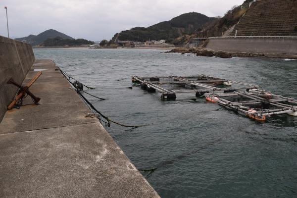 三尾川漁港の内側