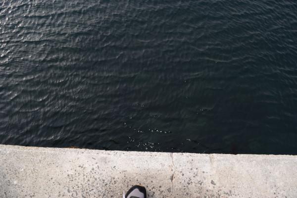 内側の堤防先端