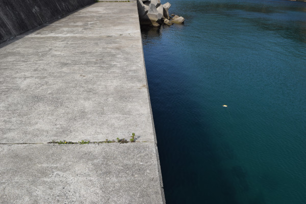 千田漁港の釣りポイント