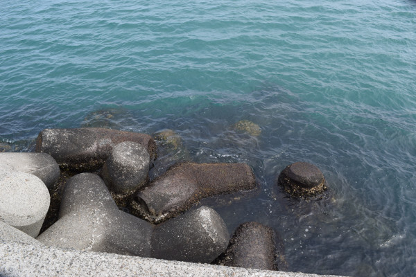 箕島漁港釣りポイント1先端