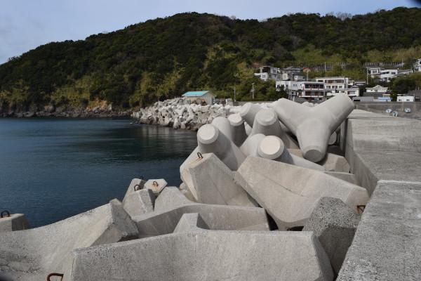 逢井漁港の外側の堤防の消波ブロック
