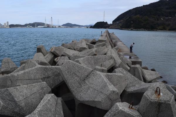 塩津漁港の消波ブロック