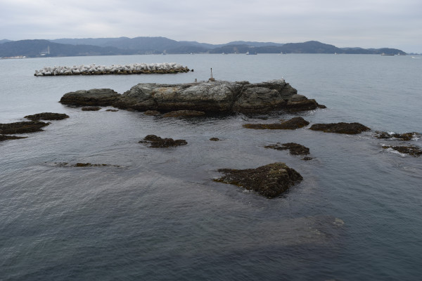 田ノ浦漁港の岩場