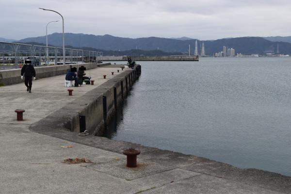 和歌浦漁港駐車場そばの釣り場