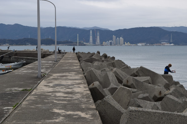 和歌浦漁港堤防付け根
